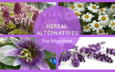 4 Herbal Alternatives to Prevent and Treat Your Migraine Pain